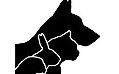 Referenz Tierarzt Kleintierpraxis ACR
